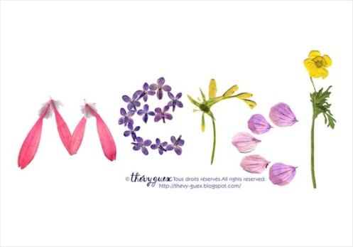 cartes-carte-merci-imprimee-herbier-fle-1015593-merci-aplatcopy-4dc14_570x0