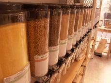 Dormance Petit Chat Grain