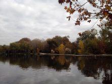 parc de Fontblanche