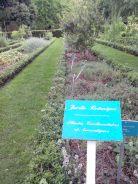 Jardin des plantes Poitiers