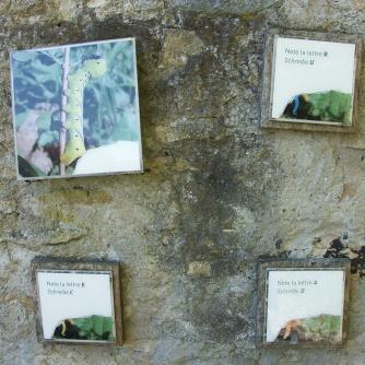 Parc Pro Natura Suisse