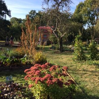 jardin des herissons